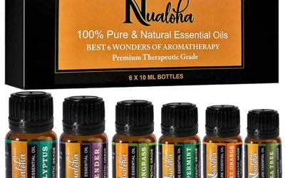 Top 6 Aromatherapy Essential Oils Set-100% Pure Natural Bulgarian Lavender, Tea Tree, Sweet Orange, Eucalyptus, Lemongrass, Peppermint Oil Pack (6×10 ml) For Diffusers, Massage, Skin,Body Care