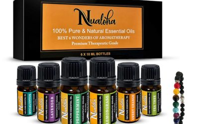 Aromatherapy Best Essential Oils Collection(Pack of 6) & 7 Chakra Lava Stone Diffuser Bracelet